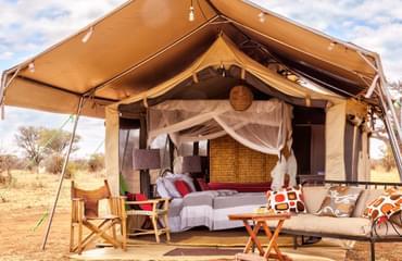 Camp in Tarangire