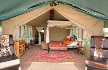 Camp in the Serengeti