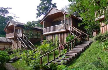comfortable lodge for gorilla trekking